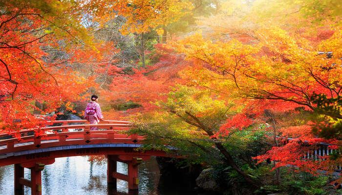 Japan In October