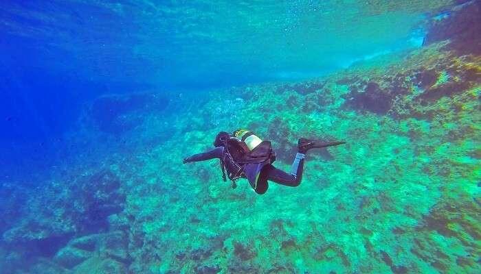 cover - scuba diving