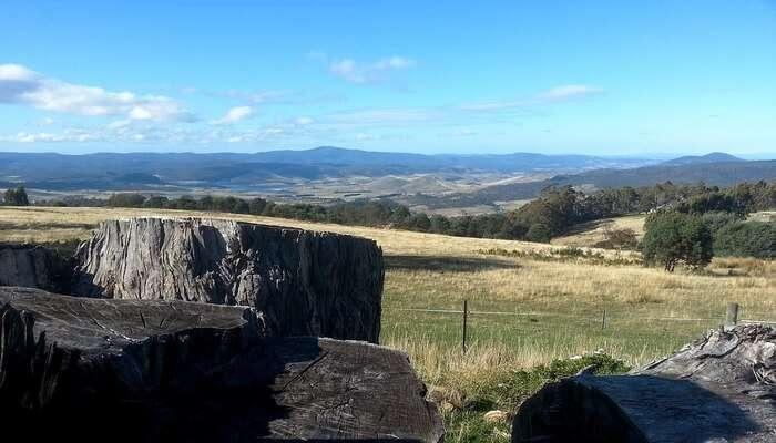 Best Tasmania in March