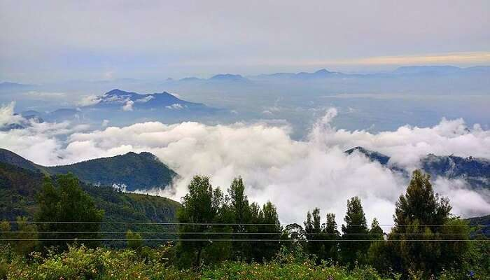 cover - things to do in kodaikanal