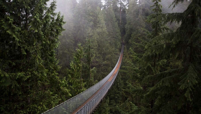 things to do in burnaby