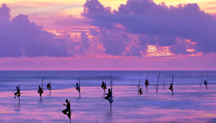 galle beach sunset