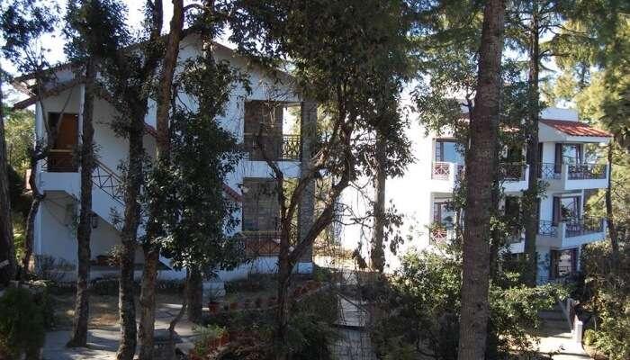 resort building amidst jungle