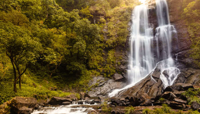 Beautiful waterfalls in Bhadra tiger reserve forest