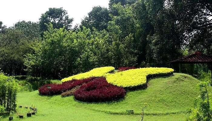 Butterfly Park chandigarh