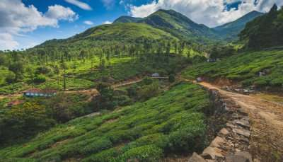 Best Places To Visit In Wayanad In June