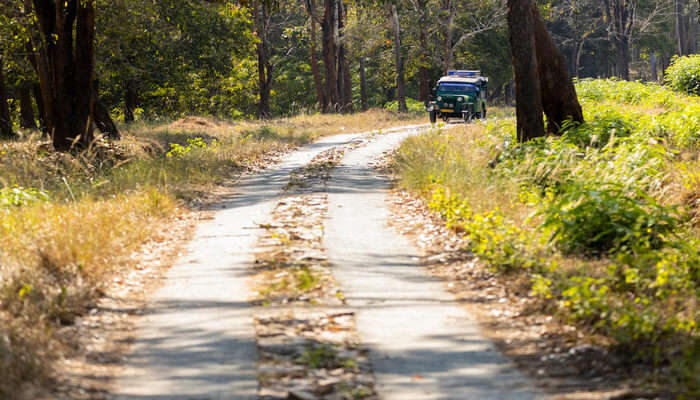 Awesome Road Trips From Mysore