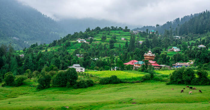 scenic view, Uttarakhand