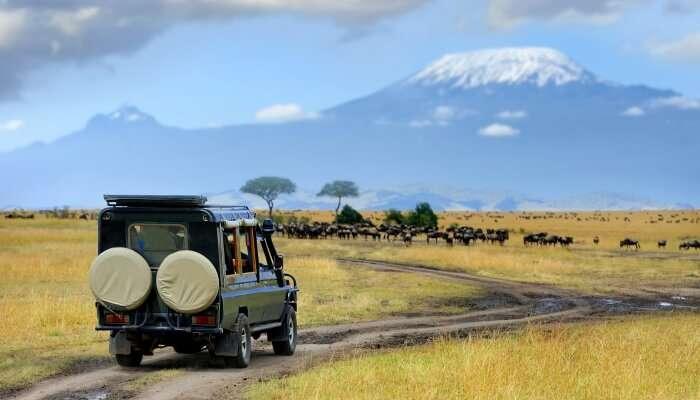 Kenya In October