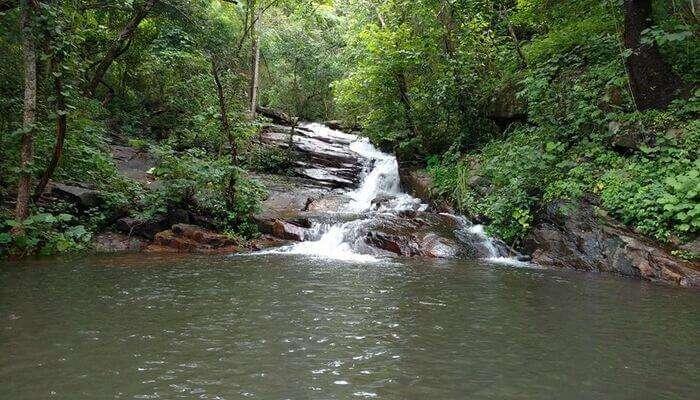 Pattathipara Waterfalls