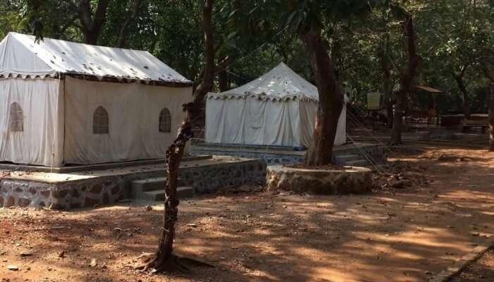 last wildlife sanctuary near Pune
