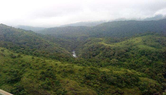 a valley cum national park