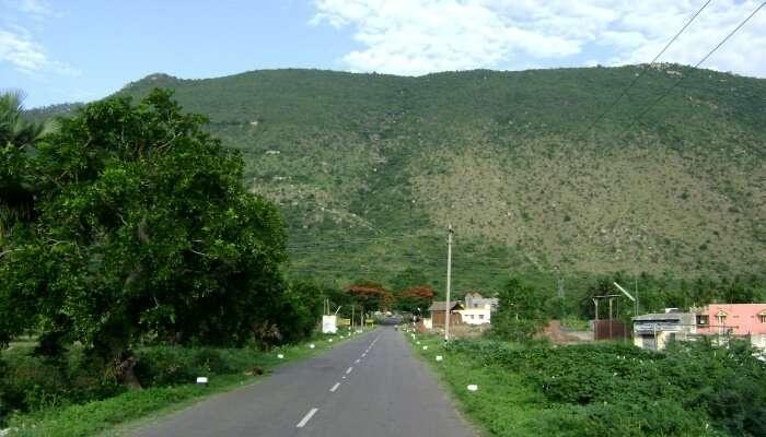 Yelagiri is a perfect hill station