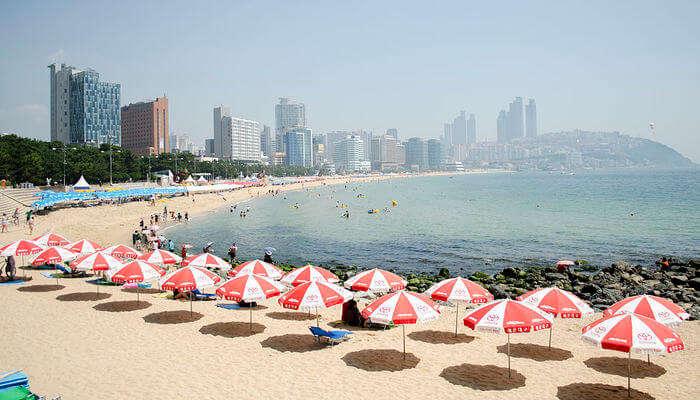 Best Beaches In South Korea