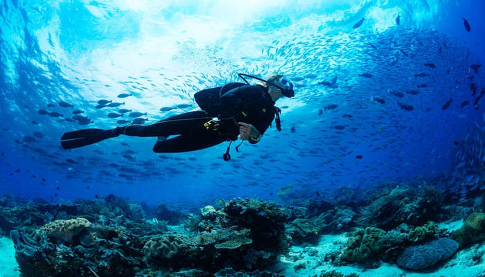 Best Scuba Diving in Hulhumale