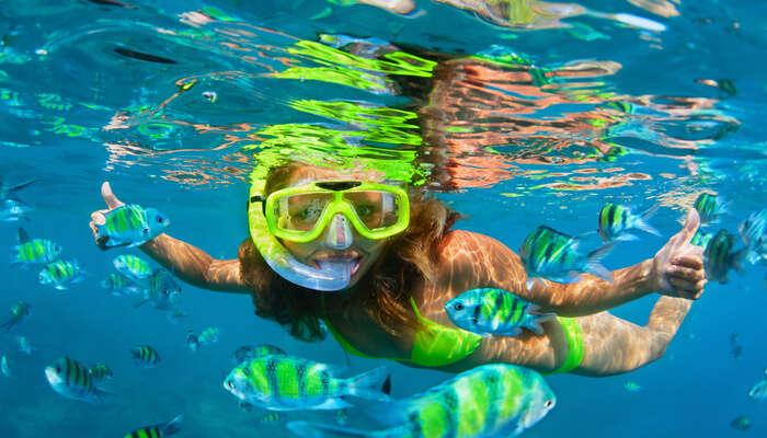 Best Snorkeling in india