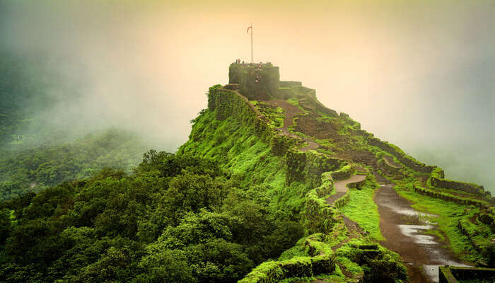 Picnic Spots Near Mahabaleshwar