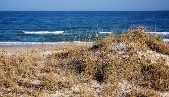 Al-Sawadi Beach