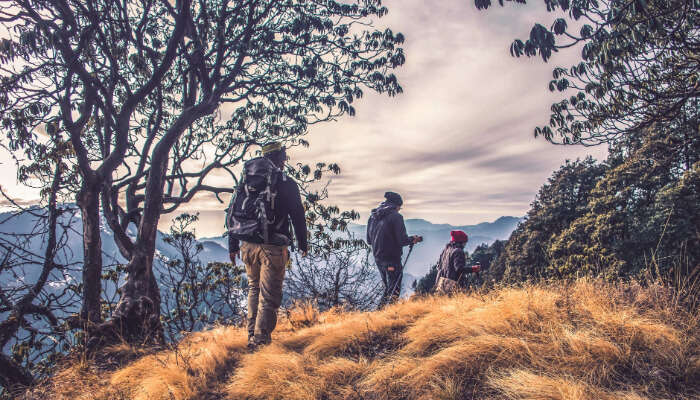 Awesome Hiking Tours In India