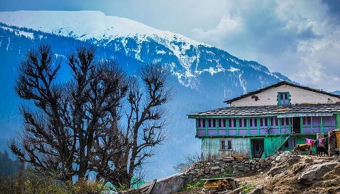 Gomukh Tapovan, Garhwal