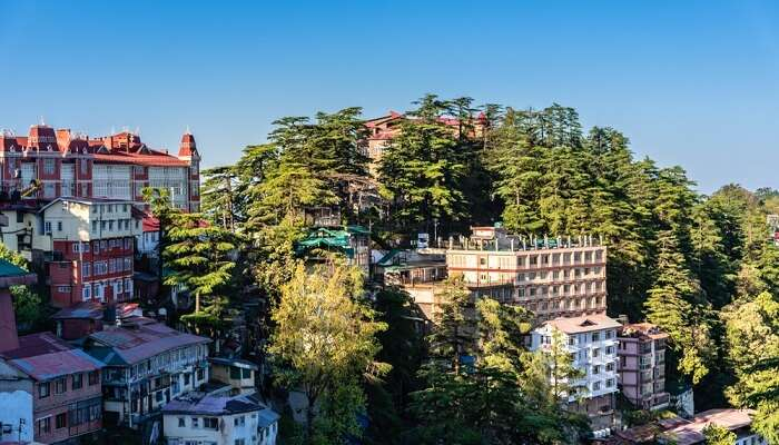 cover - green tax in shimla