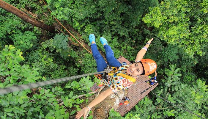 Kerala S Longest Zipline In Wayanad Here Is Everything You Need To Know