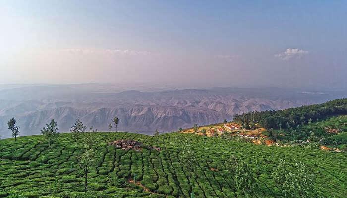 Kodanad Hills Aerial View