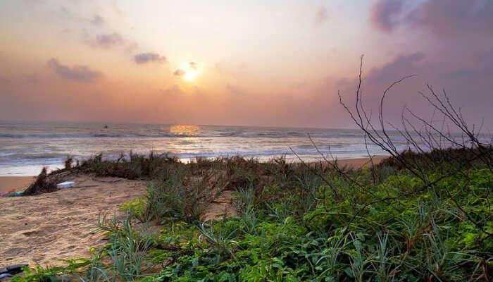 Serene Mypad Beach