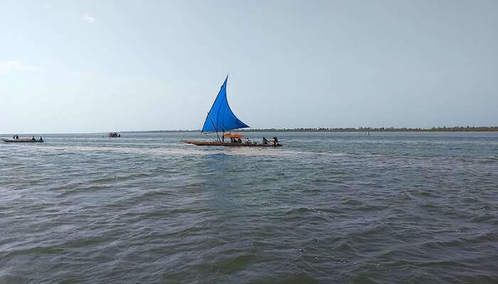 A Boat in Pulicat Lake