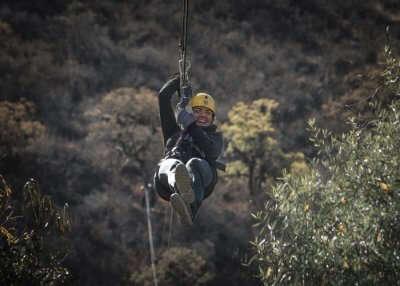 Zip Swing