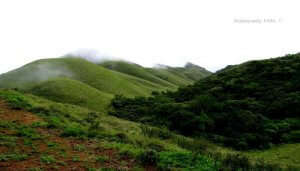 Attappaddy hills