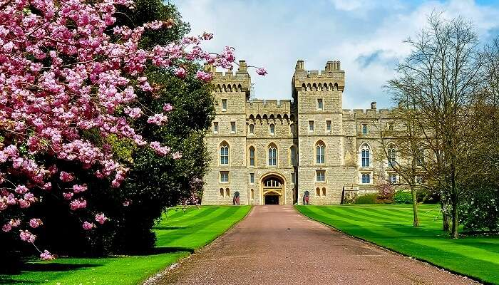 Cover- Windsor Castles