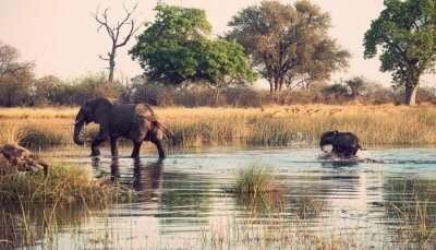 Chikhaldara Wildlife Sanctuary