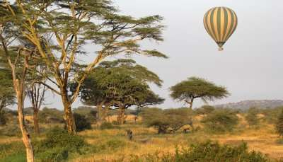 First Hot Air Balloon Wildlife Safar