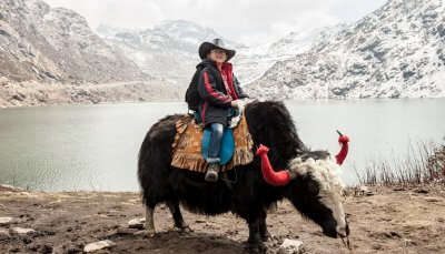 riding on yak