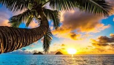 Beautiful Sunrise In Hawaii