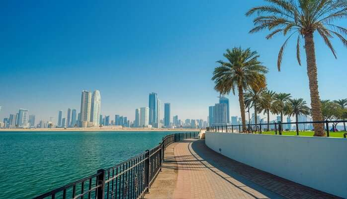 Nice picnic places in Dubai