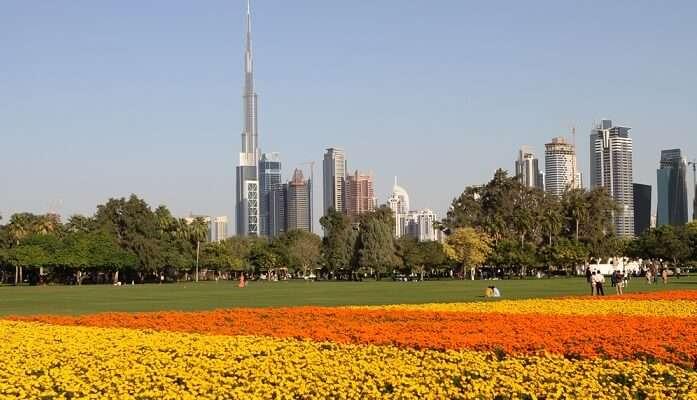 Dubai picnic points